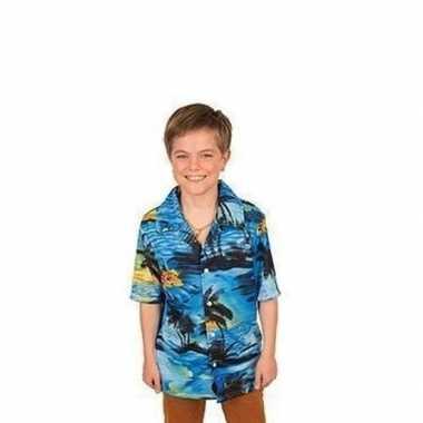 Hawaii kleding/kleding blauw jongens