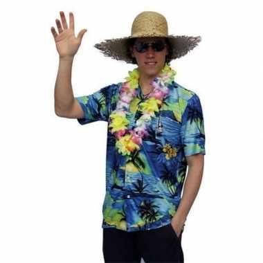 Hawaii kleding palmbomen