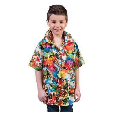Luau hawaii kleding kids
